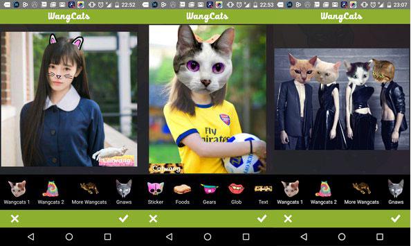Wang Cats на Андроид